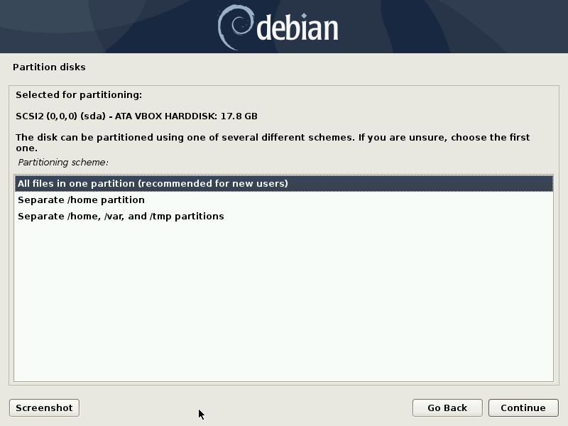 debian partition disk layout